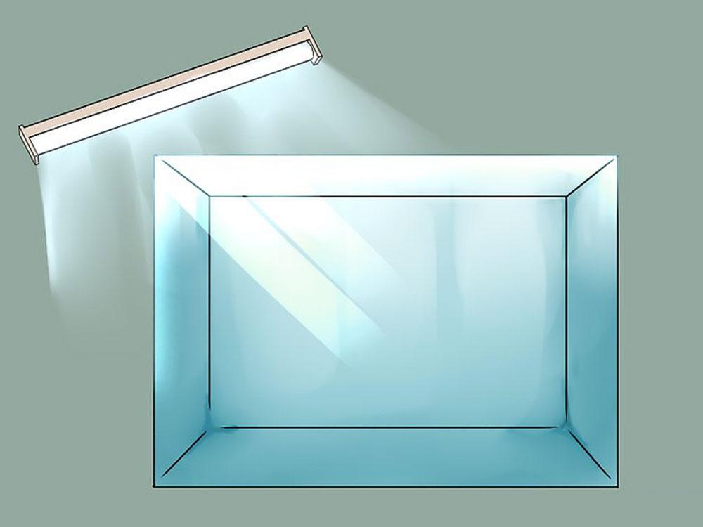 نور مورد نیاز برای آکواریوم گیاهی را تامین کنید.