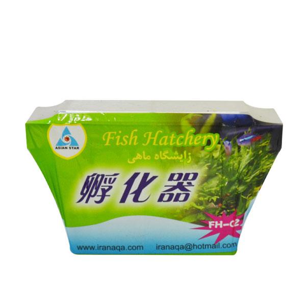 زایشگاه ماهی آکواریومی آسیان استار - Asian Star Fish Hatchery