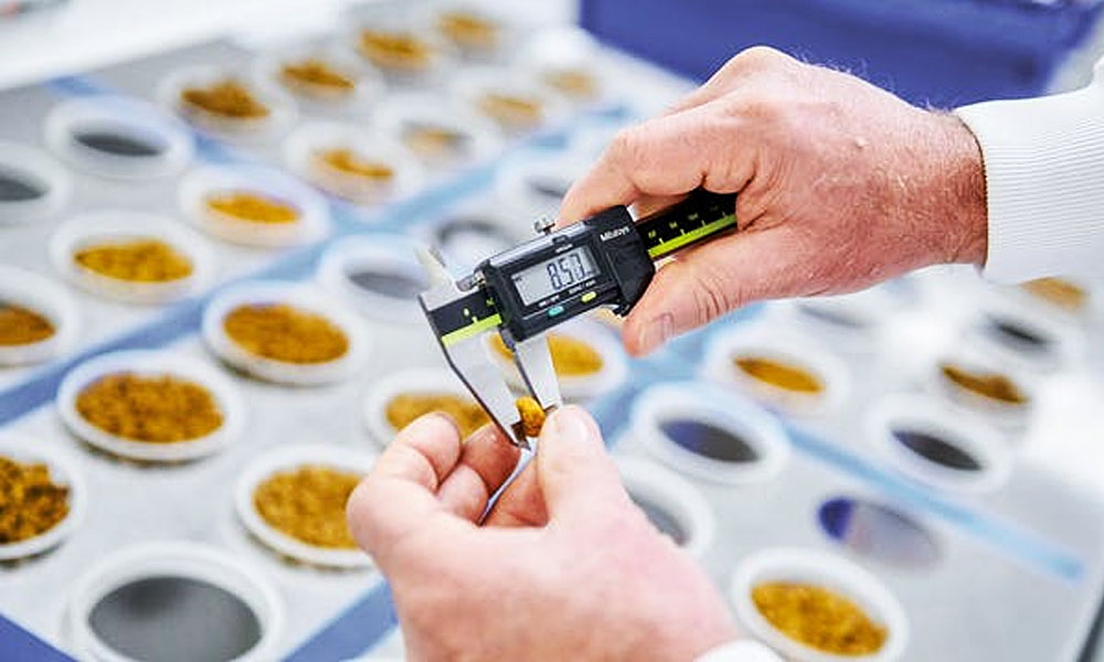 بررسی کیفیت محصولات کمپانی رویال کنین