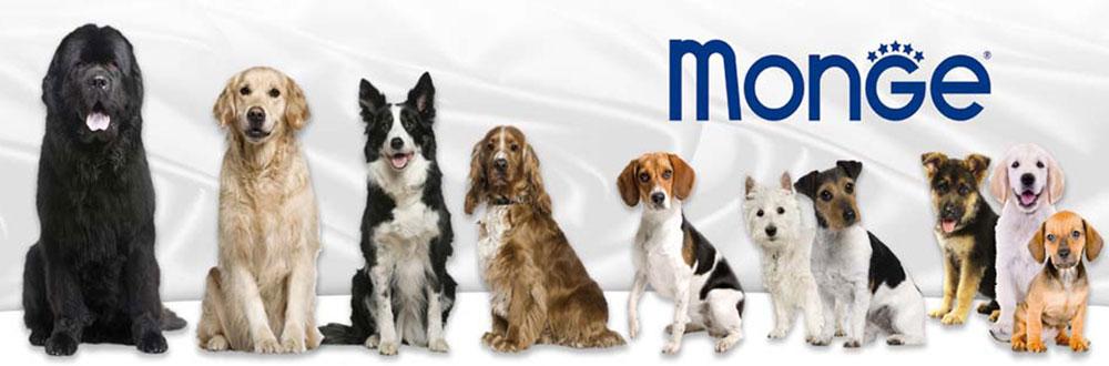 مونژه ؛ شرکت تولید کننده محصولات حیوانات خانگی Monge